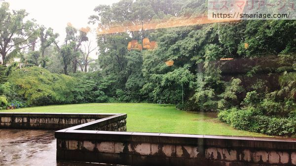 雨の日の庭園